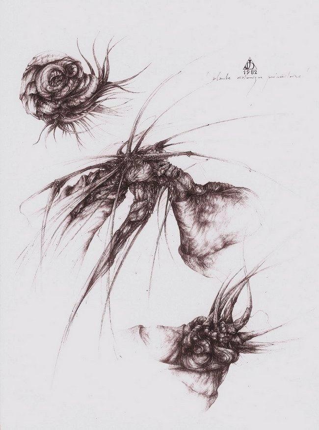 planche anatomique prémonitoire, IV, encres de chine noire et sépia, 55x46